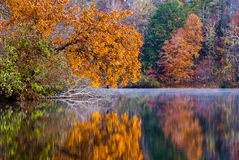 Fall on the Lake. Tried to capture the beautiful colors reflecting into the lake Royalty Free Stock Photos