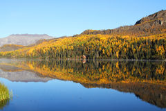 Fall Lake Stock Images