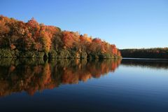Fall lake. With trees reflection royalty free stock photo