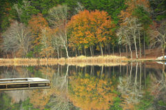 Fall on the lake Royalty Free Stock Photo