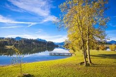 Fall at the lake. Forggensee in Allgaeu in autumn Stock Photography