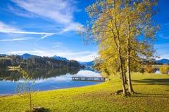 Fall at the lake Stock Photography