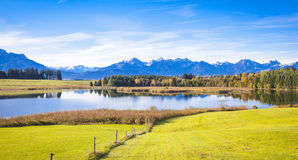 Fall at the lake. Forggensee in Allgaeu in autumn Royalty Free Stock Photos