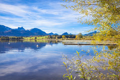 Fall at the lake. Hopfensee in in Allgau in Bavaria in autumn Royalty Free Stock Photos