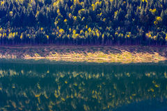 Fall on lake mirror Stock Photography
