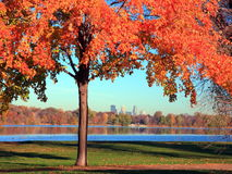 Fall at Lake Nokomis in Minneapolis. Fall season at lake Nokimins in Minneapolis Royalty Free Stock Photography