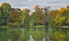 Fall on the lake Royalty Free Stock Photography