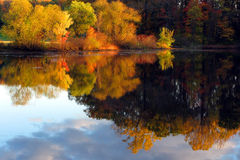 fall lake reflection scene trees Royaltyfri Bild
