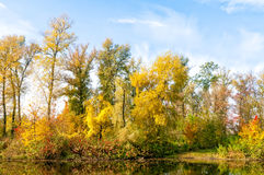 Fall on the Lake Royalty Free Stock Image