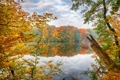Fall on the lake Stock Photography