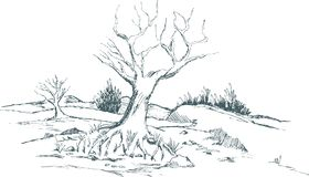 Fall Landscape. Pen and ink style illustration of a fall landscape with a tree in the foreground Stock Photo