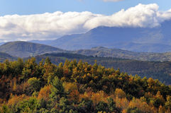 Fall landscape. View over mountain tops with trees and woods in fall Royalty Free Stock Photo