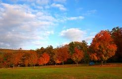 Fall landscape. Greenbrier State Park. Maryland Stock Images