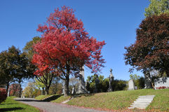 Fall landscape. A Fall landscape Quebec, canada Stock Images
