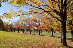 Fall landscape. A Fall landscape Quebec, canada Stock Photos