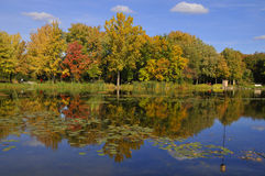 Fall landscape Royalty Free Stock Images