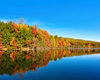 Fall landscape and autumn trees reflection at Bays Mountain Lake in Kingsport, Tennessee. Vibrant autumn colored trees reflecting in the mirror-like surface of Royalty Free Stock Photos