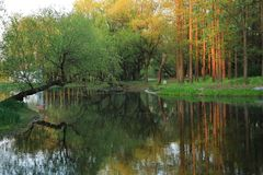 Picture of autumn park with red and yellow trees and lake in the shanghai royalty free stock photography
