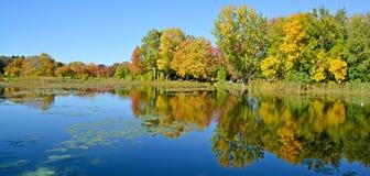 Fall landscape, Stock Image