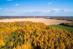 Fall landscape. Fall day with clear blue sky. Autumn aerial background. Forest with yellow autumnal trees. View from above stock photos
