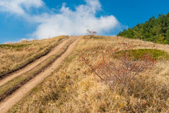 Fall Landscape with earth road in mountain pasture Demerdzhi. Crimea, Ukraine royalty free stock image