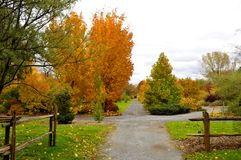 Fall landscape. Quebec province Canada stock photos