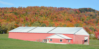 Fall landscape farm. BROMONT QUEBEC CANADA 10 11 2016: Fall landscape farm in country side of Bromont it is in the Brome-Missisquoi Regional County Municipality Stock Photography