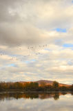 Fall landscape with flying gooses 3 Royalty Free Stock Photography