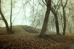Fall landscape. Foggy fall park alley with bare fall trees and fallen autumn leaves covering the old stone stairs. Fall gothic landscape. Foggy fall alley with royalty free stock photography