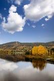 Fall Landscape Geithus Stock Photos