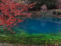 Fall landscape at lake Blautopf Stock Photo