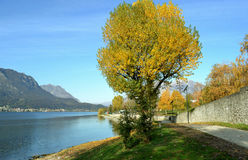 A fall landscape at the lake Como district. Stock Photos