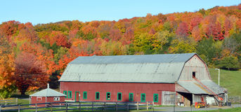 Fall landscape old farm. BROMONT QUEBEC CANADA 10 11 2016: Fall landscape old farm in country side of Bromont it is in the Brome-Missisquoi Regional County Stock Image