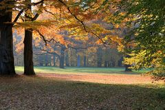 Fall landscape in a park Stock Images