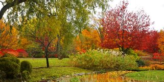 Fall landscape. Quebec province Canada stock photo