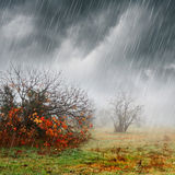 Fall landscape in rain and fog. Stormy autumn day with fog, rain, fall colors and dark clouds Stock Photo