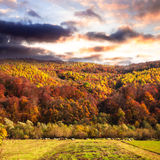 Fall landscape Stock Photography