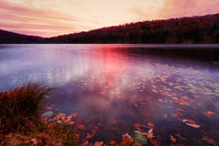 Fall landscape at sunset. Stock Photography