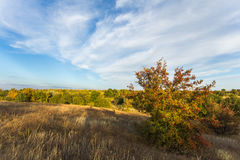 Fall landscape at sunset Royalty Free Stock Photography