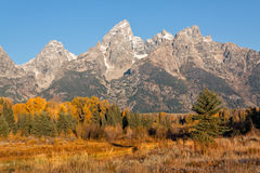 Fall Landscape in the Tetons Stock Image