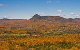 Fall-Landschaft Stockbild
