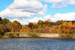 Fall Laub-bunter Autumn Scene Stockbild