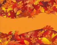 Fall-Laub Notecard mit Fahne Stockfotos
