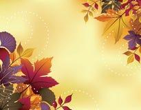 Fall Leaf Background royalty free illustration