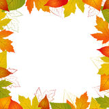Fall  leaf border. Illustration isolated from background Stock Photo