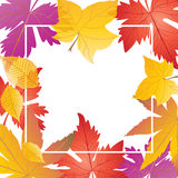 Fall leaf frame. With white space for text. Autumn leafs border. Fall maple tree leaves banner design. Thanksgiving Holiday wallpaper. Vector illustration for Royalty Free Stock Photo