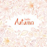 Fall leaf nature pattern with lettering hello Autumn. Autumn lea. Ves background. Season floral icon wallpaper stock photo