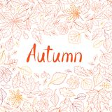 Fall leaf nature seamless pattern. Autumn leaves background. Sea. Son floral icon wallpaper royalty free stock photos