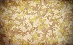 Fall Leaf texture autumn background Royalty Free Stock Image