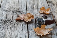 Fall leaf and watch. Seasoning Daylight savings time concept Royalty Free Stock Images